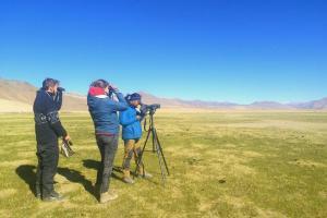 Ladakh Wildlife Update