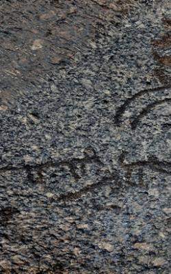 Petroglyph of ladakh