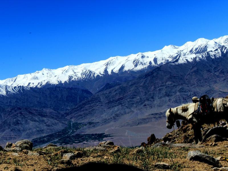 Sabu to Digar Trek via Nayok in Nubra Valley