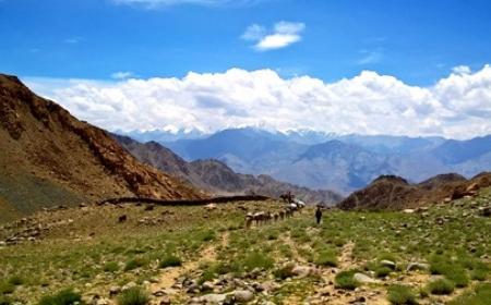 Ladakh Marathon 2019