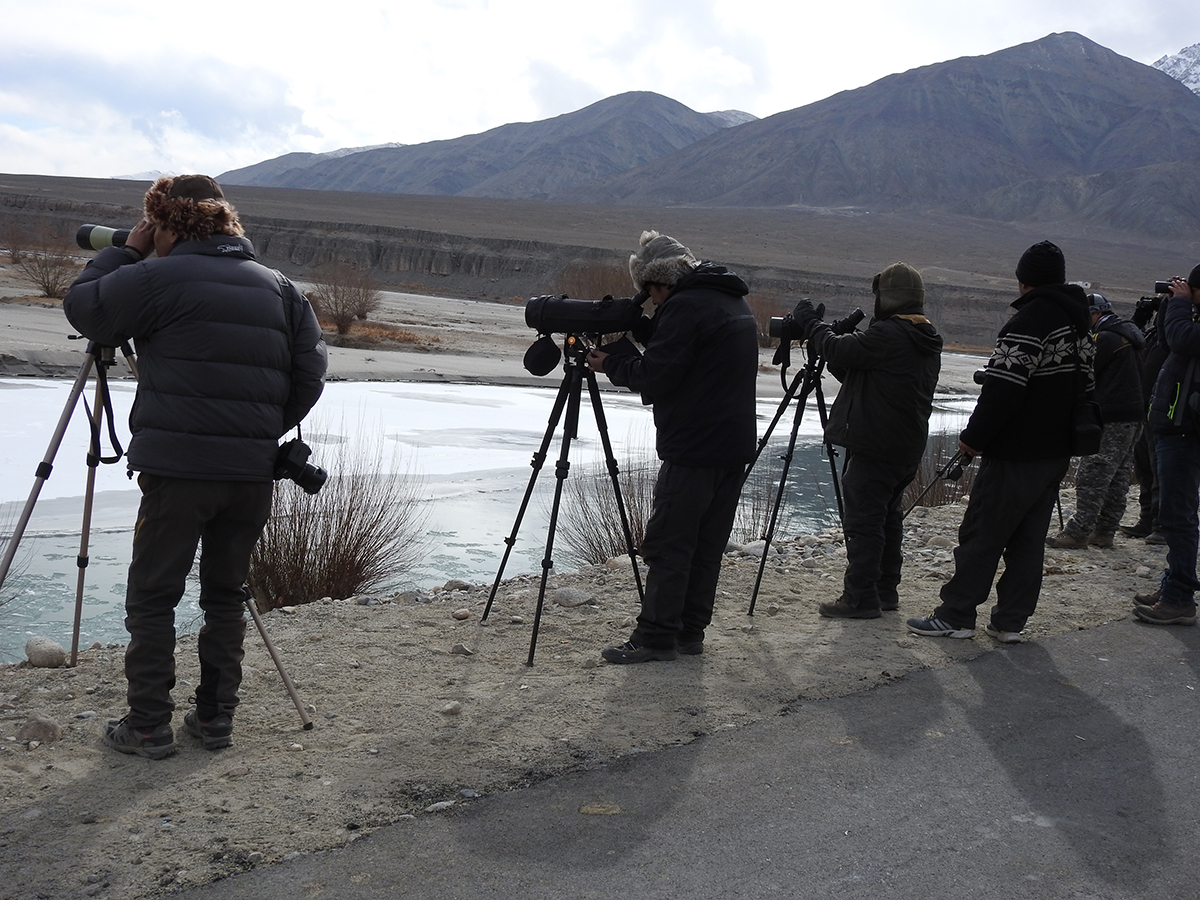 Wildlife Conservation and Birds Club of Ladakh (WCBCL) is founded by Lobzang Visuddha and friends. Ancient Tracks poineers in bird and wildlife conservation in Ladakh.