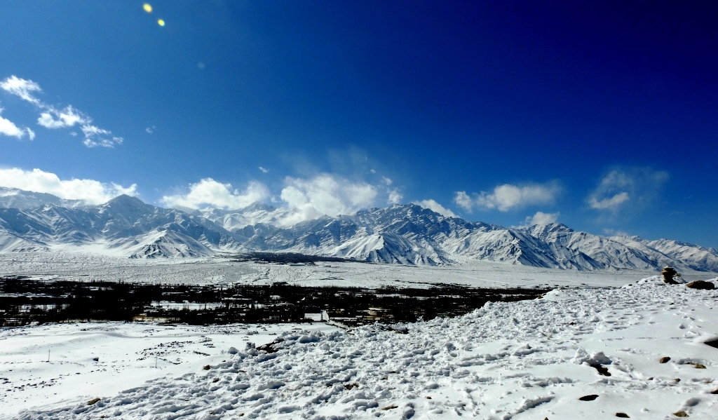 Winter in Ladakh is popular for spotting snow leopard and other rare wildlife and birds of Ladakh. When the snowline falls to lower valleys, good chances of spotting snow leopard is great.