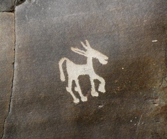 Rock Arts of Ladakh Expedition