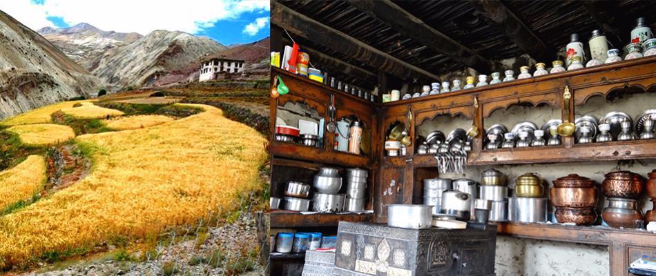 ladakh homestay, budget homestay ladakh, ladakh homestay packages